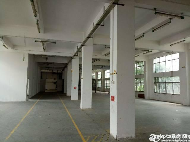 龙岗平湖华南城机荷高速出口新出一二楼3000平方独院招租,易招工