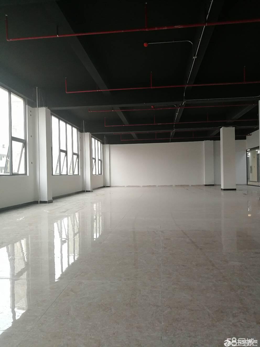 丹竹头立信路110平198平500平电商仓库招租