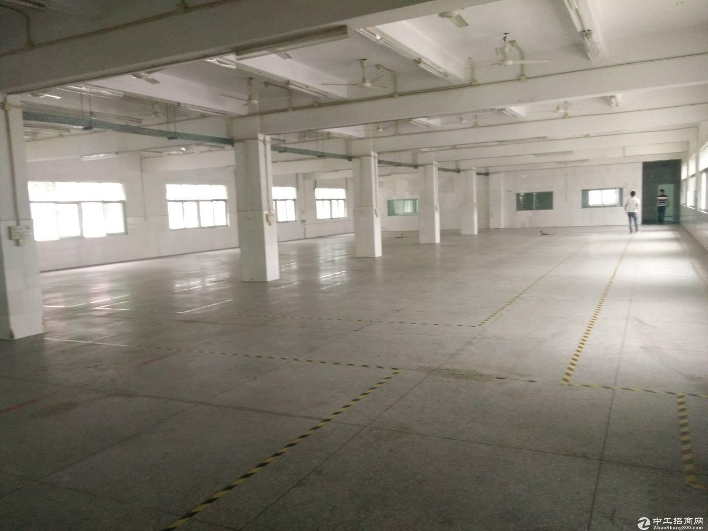 平湖辅城坳工业区3600平方独门独院厂房招租