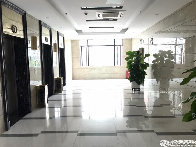 广州黄埔区珠吉路附近独门独院550平方豪华装修