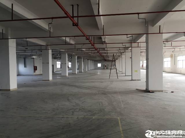 石岩镇塘头大型园区3300平方整层厂房出租