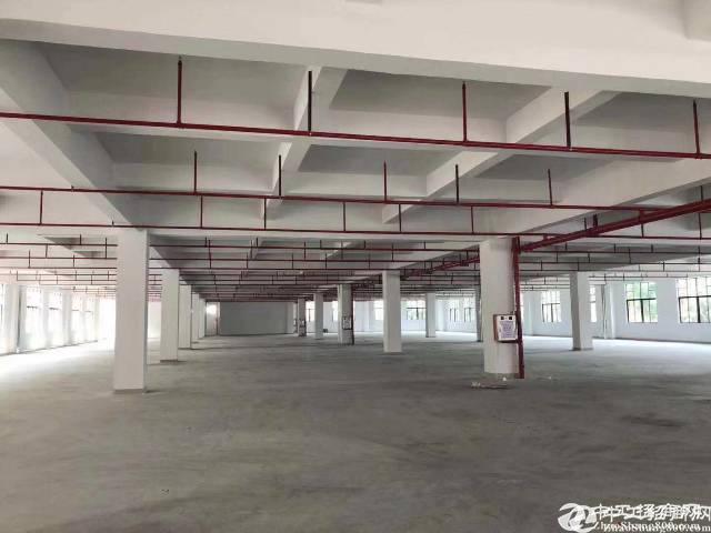 坪山 坑梓大工业区原房东一楼1000平厂房出租