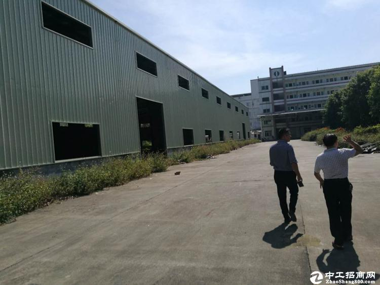 坪山区比亚迪附近新出钢构厂房800平招租