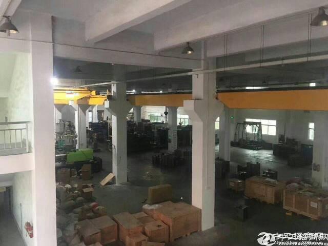 (出租) 龙岗宝龙高新园区新空出一楼2500平方2楼2500