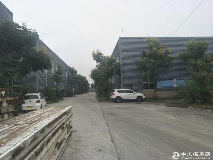 全新食品厂房东直售,占地18亩,排污手续等齐全,带冻库等