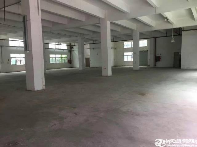横岗永湖地铁口原房东独院标准厂房4000平出租