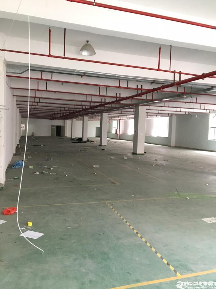 坪山坑梓楼上整层2750平米红本厂房有装修