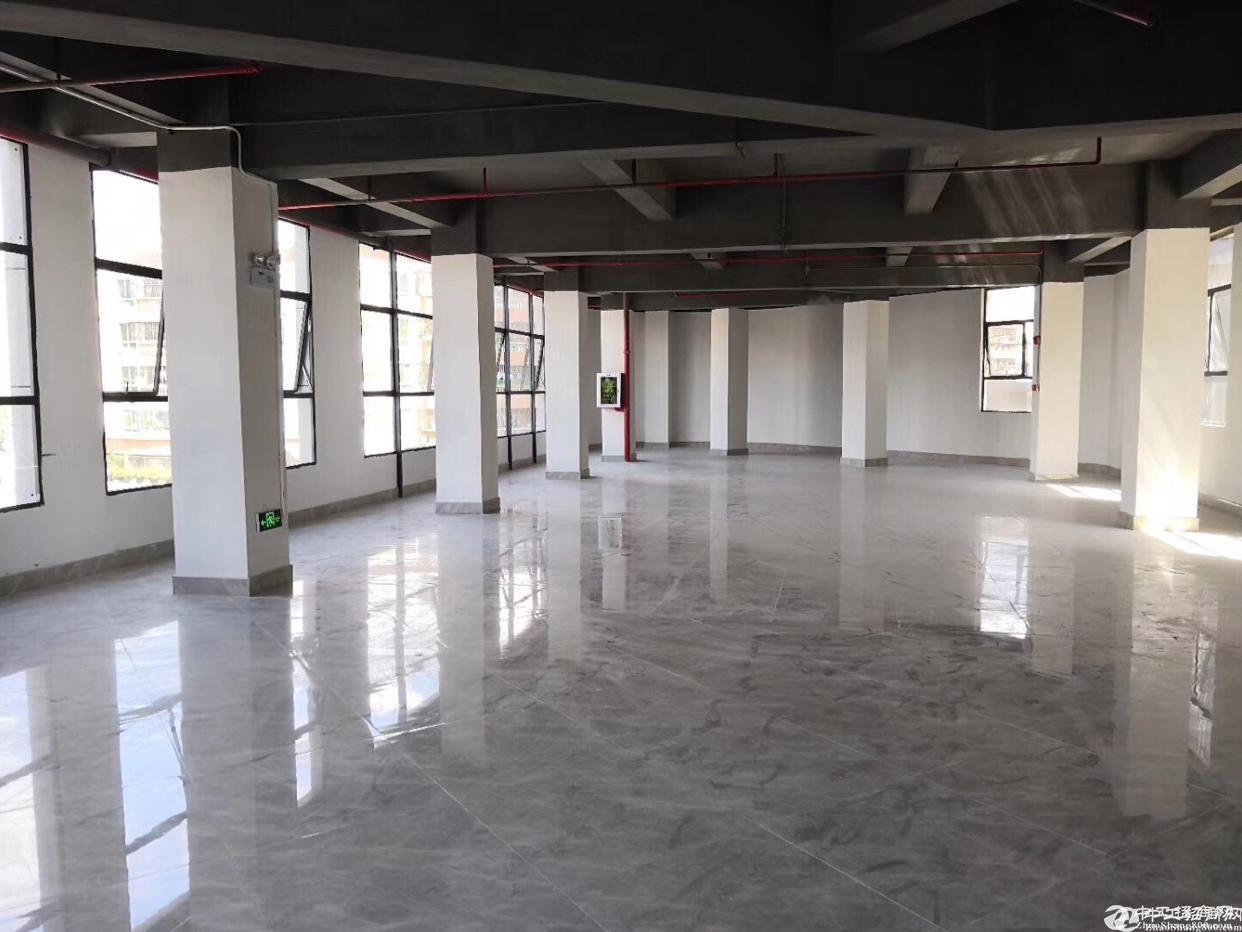 坪山新区红本独院厂房7500平米出售,证件齐全。