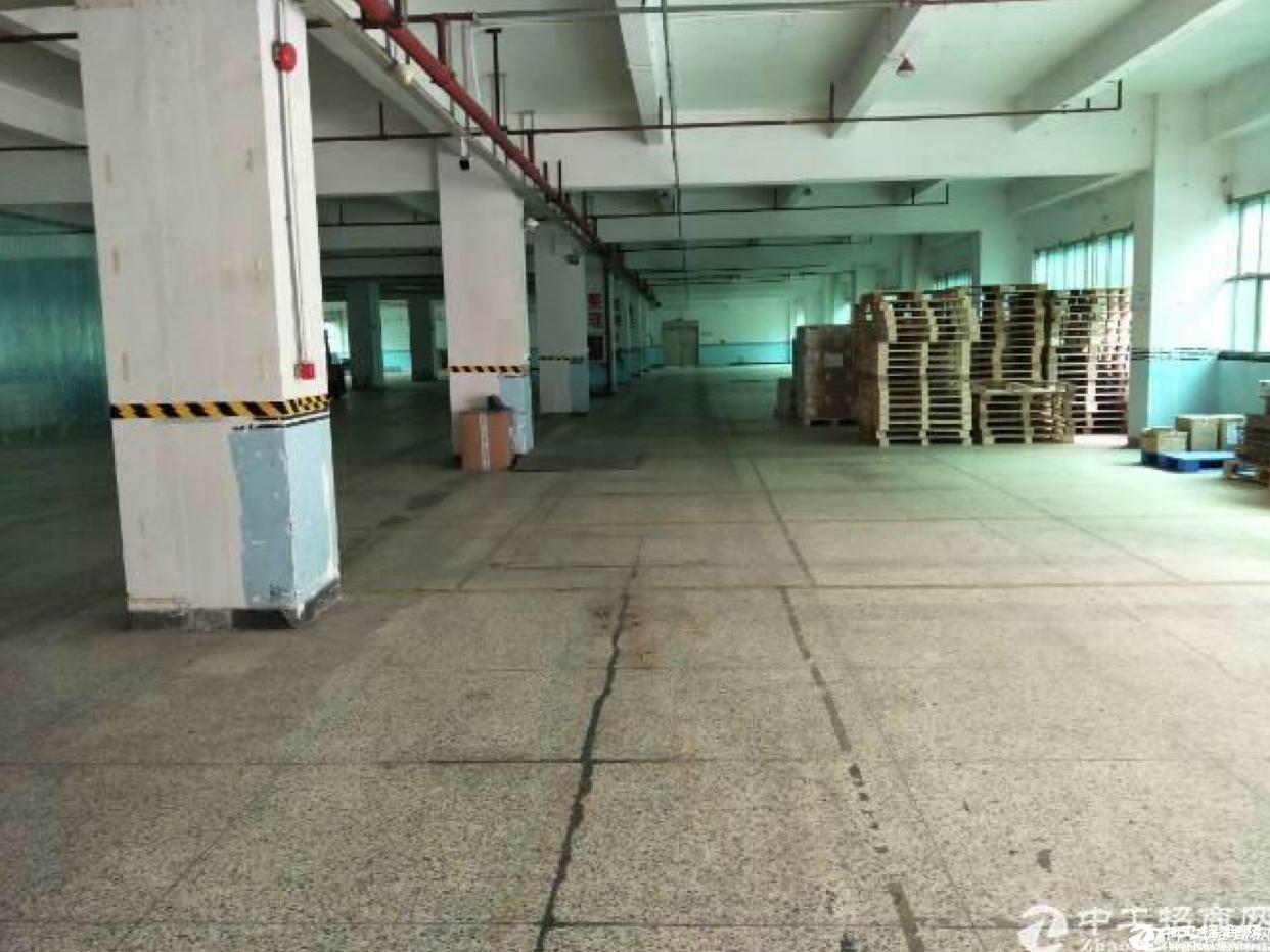 布吉 丹竹头2800平方红本原房东精装修厂房出租,可以分租。