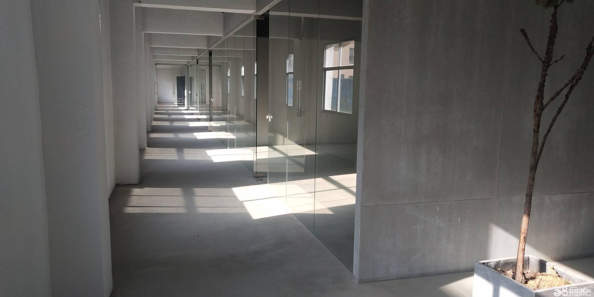 盐田新出带办公室展厅厂房900平适合电商贸易轻生产