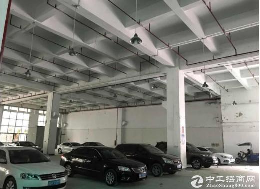 坂田利金城新出一楼8米高5500平方大小分租