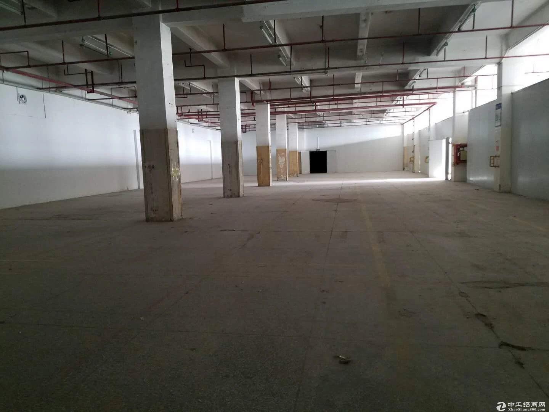 南联新出原房东厂房楼上两层2600平出租大小分租