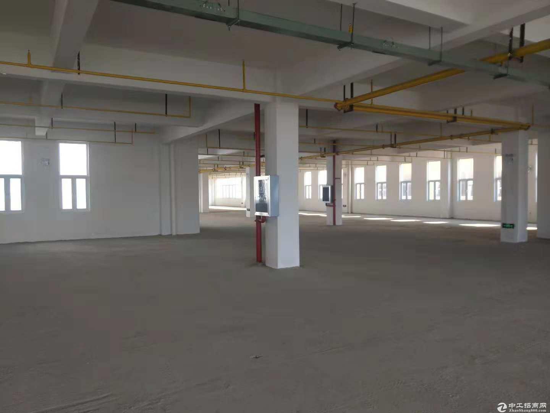 阳逻地铁口3000平米标准工业园,可以生产仓储,可分割,配套全