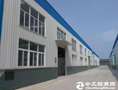 全新12万平方单一层厂房出租,可分租,15米高