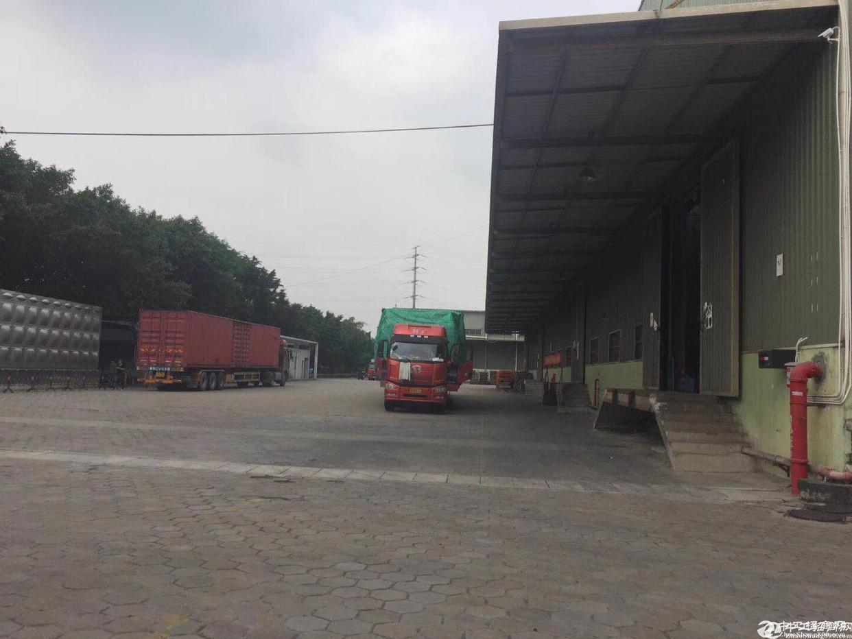 广州黄浦港口物流园2000平仓库招租带卸货平台