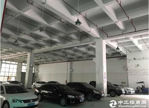 坂田利金城新出一楼8米高10000平方大小分租