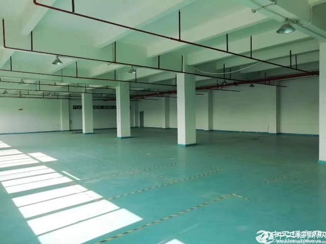 [坂田厂房]坂田上雪新出原房东一楼1350平米使用率高