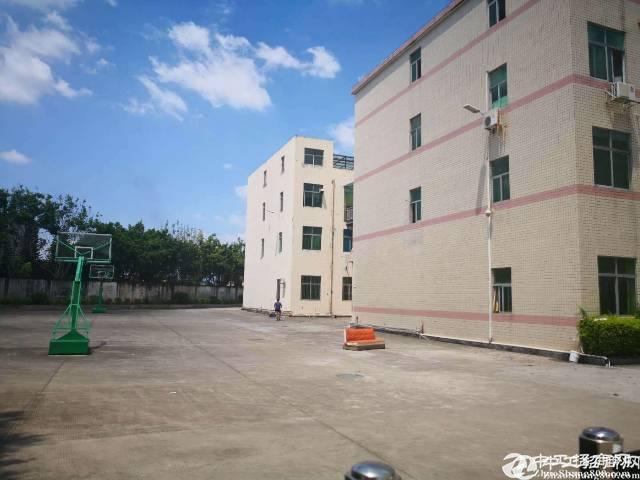 横岗荷坳原房东厂房1楼500平方米出租