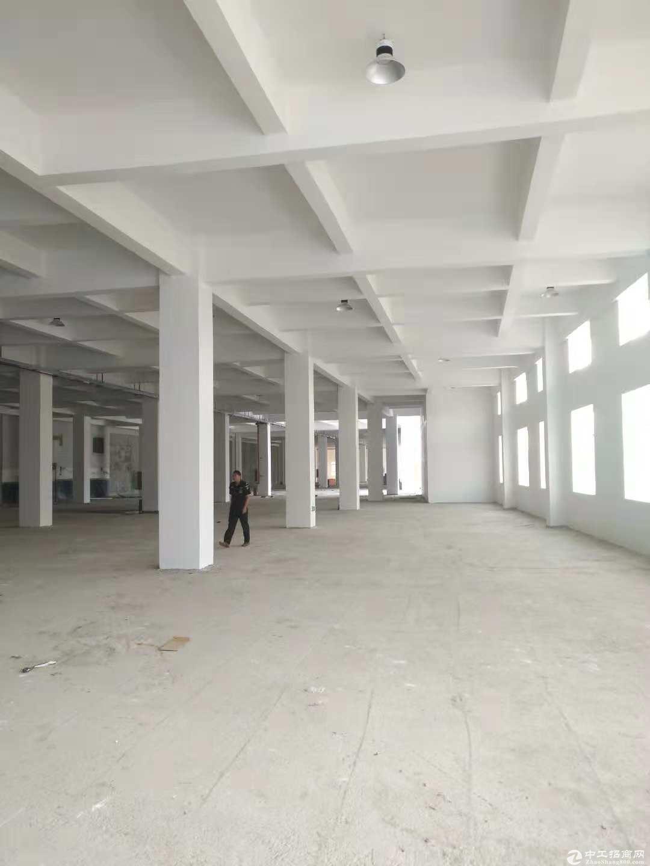 坪山区大工业区原房东带红本3110平现成装修厂房出租