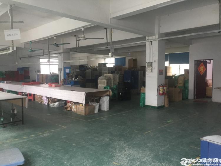 坪山六合城附近470平米标准厂房招租