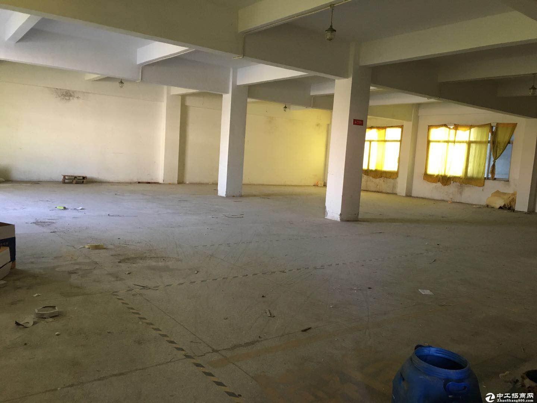 坪山六合城一楼标准厂房470平方20元出租可分租