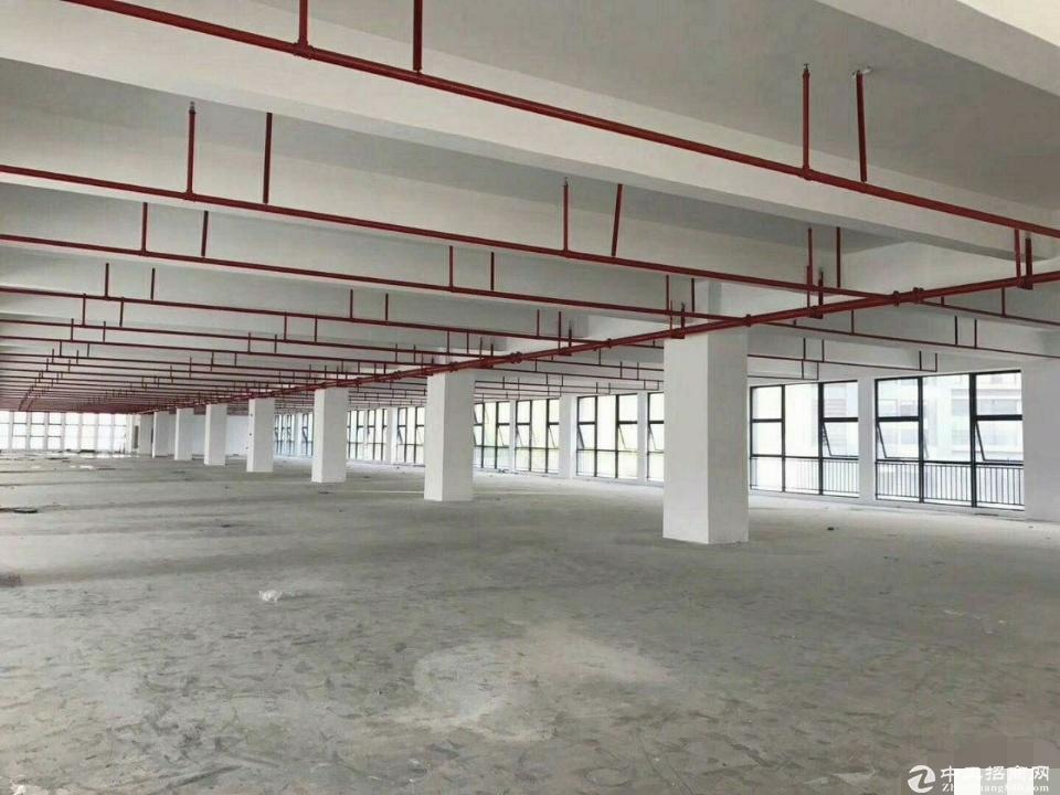 (出租)原房东独院红本厂房出租环评消防精装电梯齐全空地大 3000平