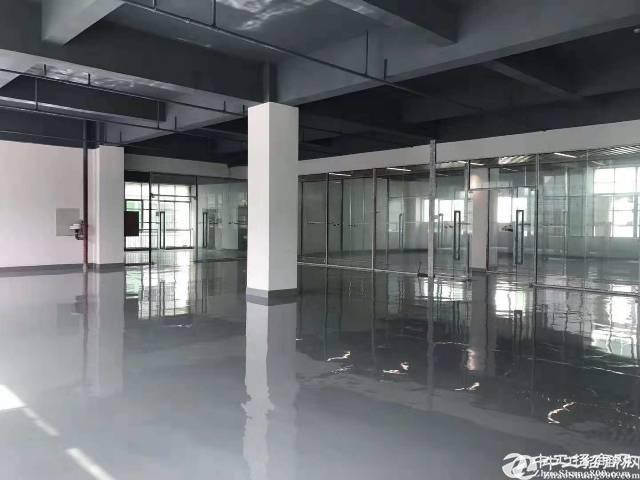 布吉沃尔玛附近3万平厂房办公室全新出租,拎包入驻.