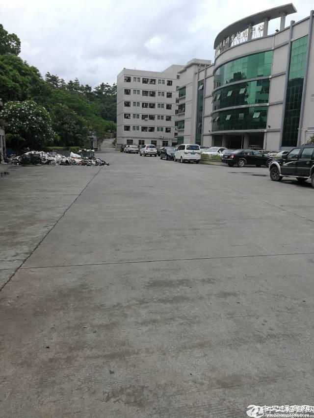 东莞清溪国有精品小独院厂房出售