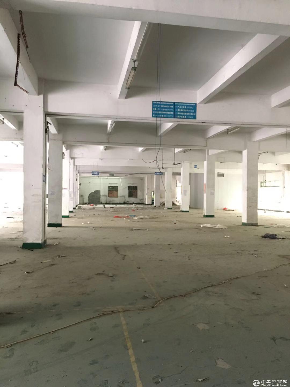 横岗安良社区二楼厂房3000平方出租,可分租