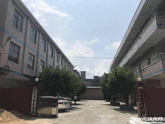 坪山深汕路边近龙岗3楼1000平实际面积招租