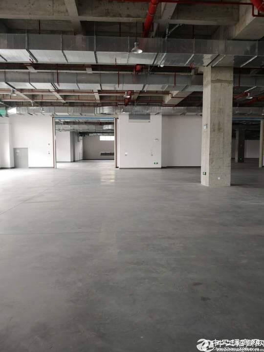 深圳(盐田港)标准物流仓库68000平方米招租