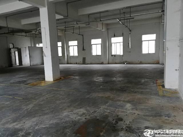 坪山高铁站旁空出一楼450平方厂房21出租