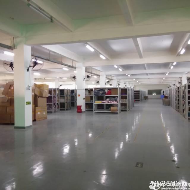 平湖清平高速出口处3楼2200平方带装修厂房出租,水电现成 空地大