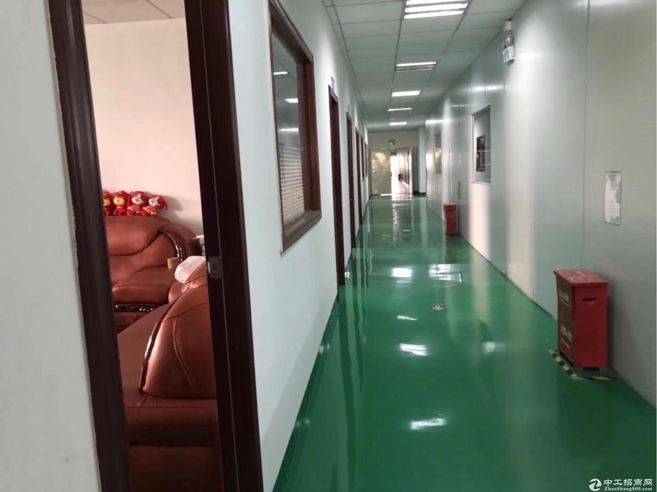 松岗大田洋新出楼上1200平方,带装修,无转让费。