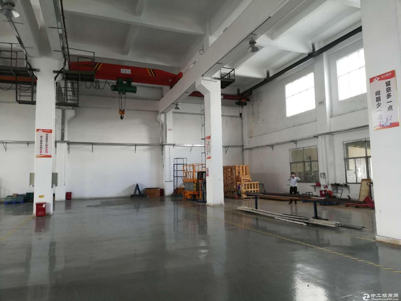 原房东红本独院厂房一楼1000平实际面积出租,高度6米