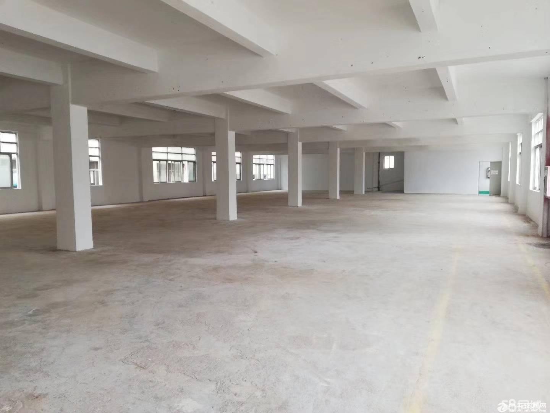 龙岗区平湖山厦罗山工业区三楼3100单层标准厂房出租 带装修