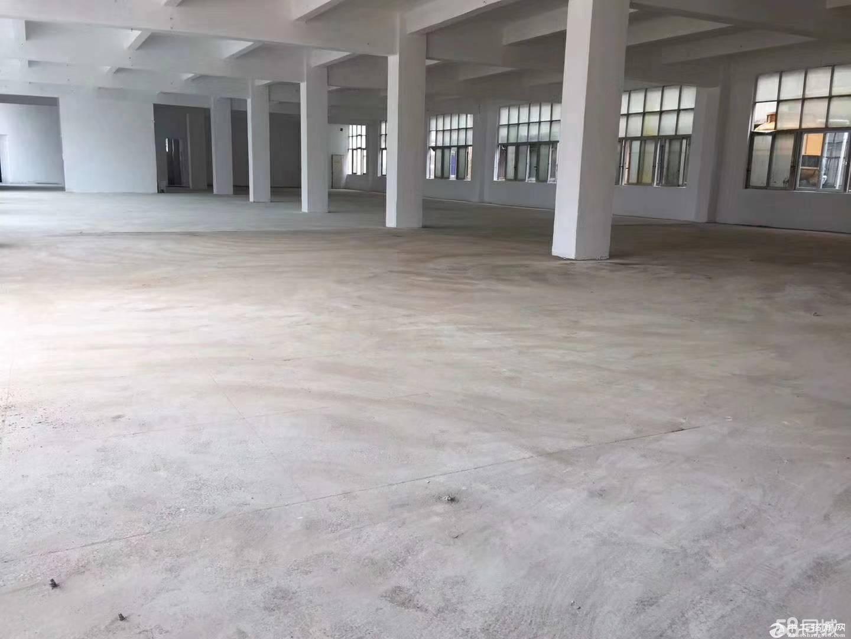 龙岗区平湖山厦罗山工业区三楼3100单层标准厂房出租 带装修-图5