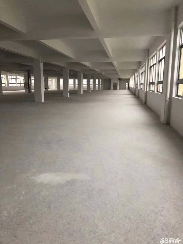 龙岗区平湖山厦罗山工业区三楼3100单层标准厂房出租 带装修-图3
