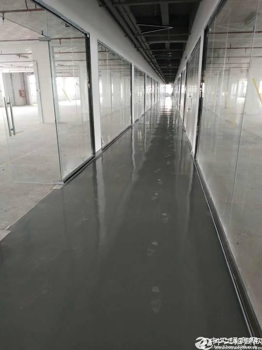 坂田 坂雪岗大道红本独院独栋厂房6000平方出租,可以分租。