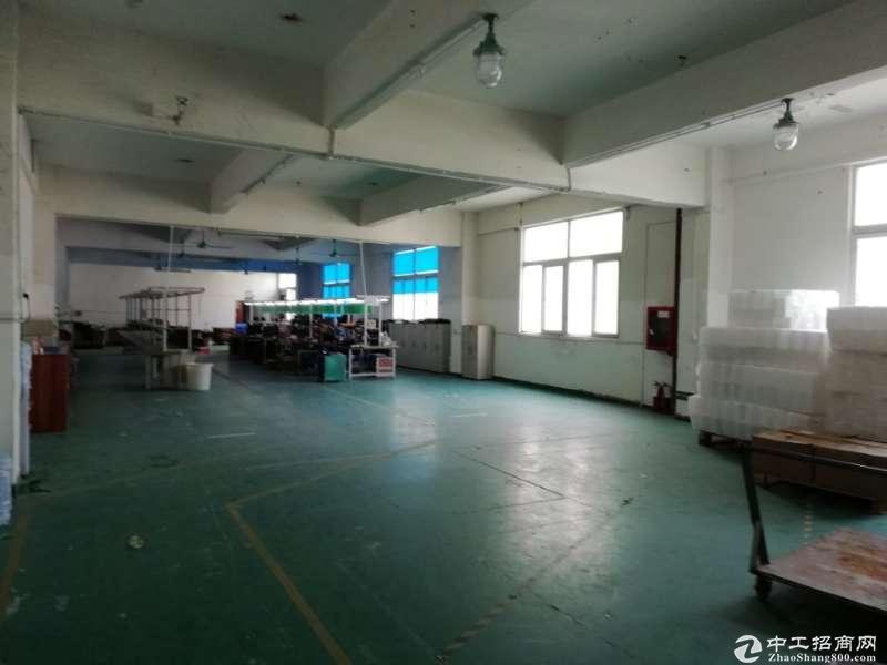 龙岗新生北通道旁 独院厂房4800平(可分租)出租