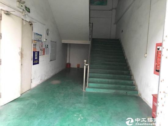 坪山深汕路边新出楼上600平米厂房18元出租