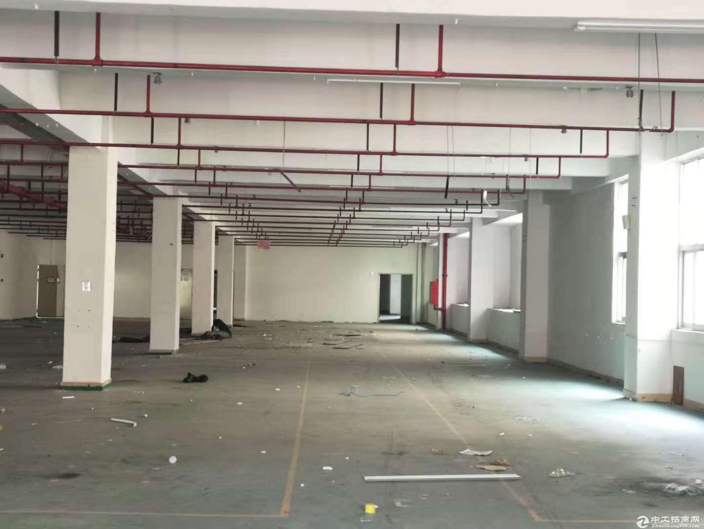 坪山大工业区新出二楼2000平米原房东红本厂房出租