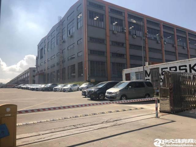 坪山工业园钢构厂房50000平15米高出租