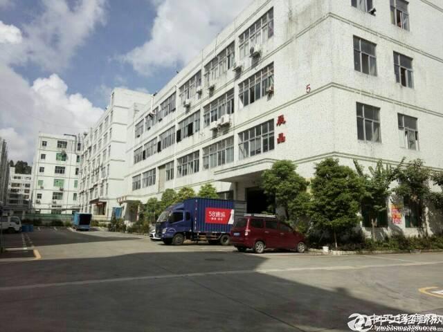 石岩水田一楼1080平方厂房高6米有装修出租