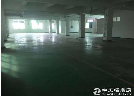坂田五和地铁口附近精装办公厂房300平起租