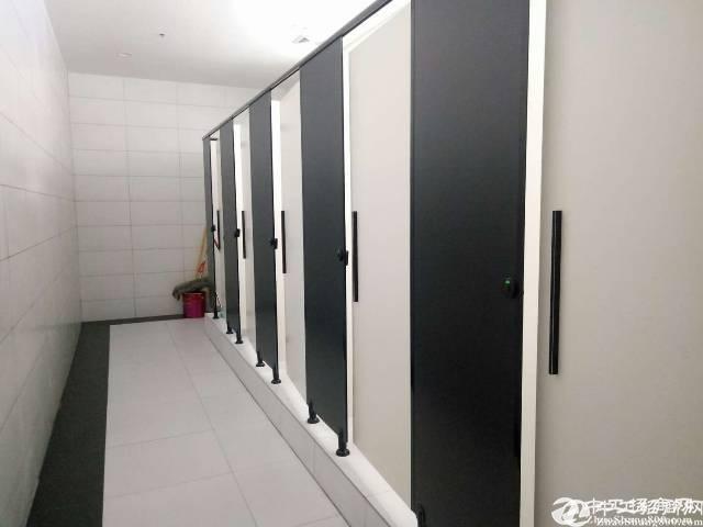 平湖12800平米红本独院出租年前定特优惠,可分租