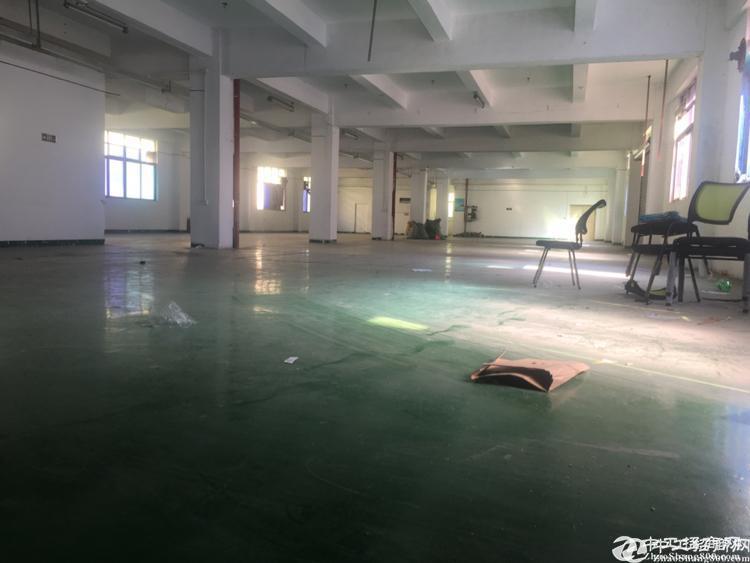 龙岗平湖辅城坳新出原房东花园式独院厂房4650平