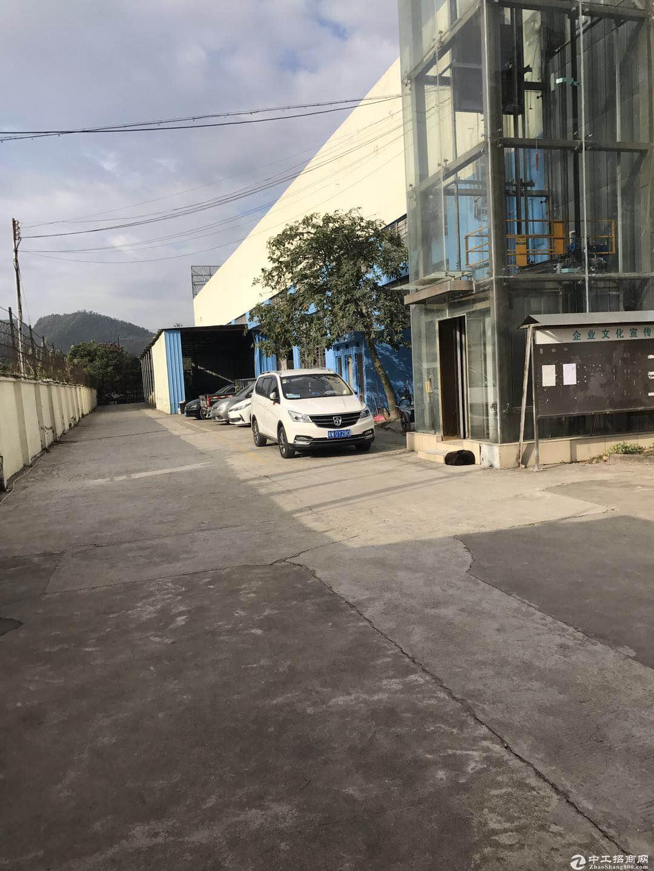 横岗沙荷路边独院钢构2500平米招租 滴水9米高