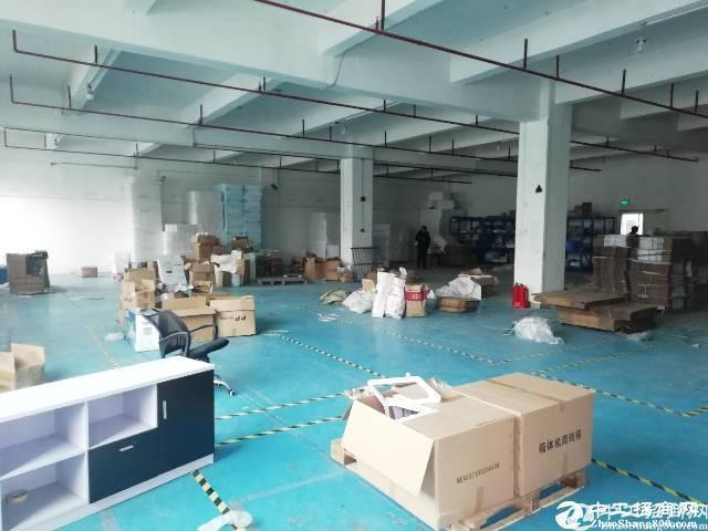 坪地高速出口新出.1楼标准厂房1500平米,层高5.5米