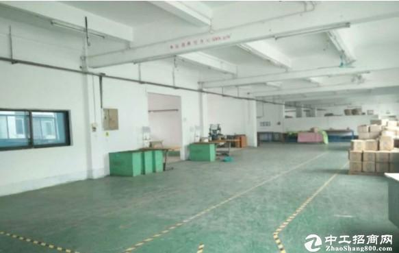 坪山新区石井独院厂房 5100平米出租